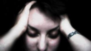 Flickr, Sarah G...